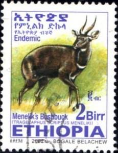 ethiopia374