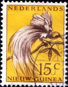 papouasie443