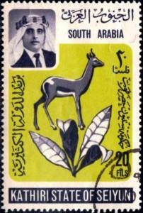 seiyun arabie du sud049