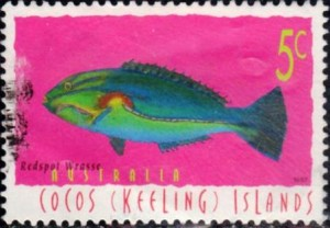 cocos keelings islands896