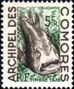 comores archipel009