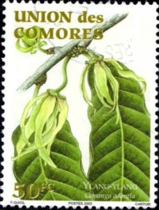 comores512