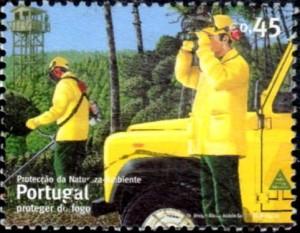 incendie portugal631