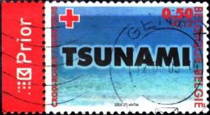 tsunami belgique144