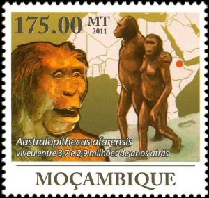 australopithecus-afarensis-moz