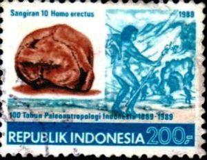 homo-erectus-indonesie330