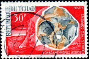tchadanthropus-uxoris339