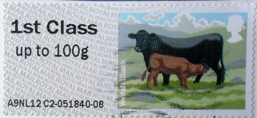 L'attribut alt de cette image est vide, son nom de fichier est vache-gb-1024x469.jpg.